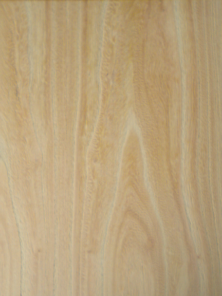 Fancy Plywood Texture Elm Veneer 008