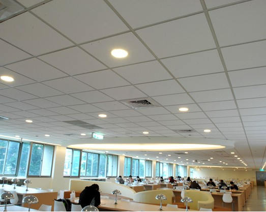 Pvc Gypsum Ceiling Board 154