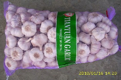normal white garlic - 4.0cm-6.5cm