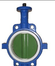 butterfly valve Disc & Body Casting - IFAXWF-UDB