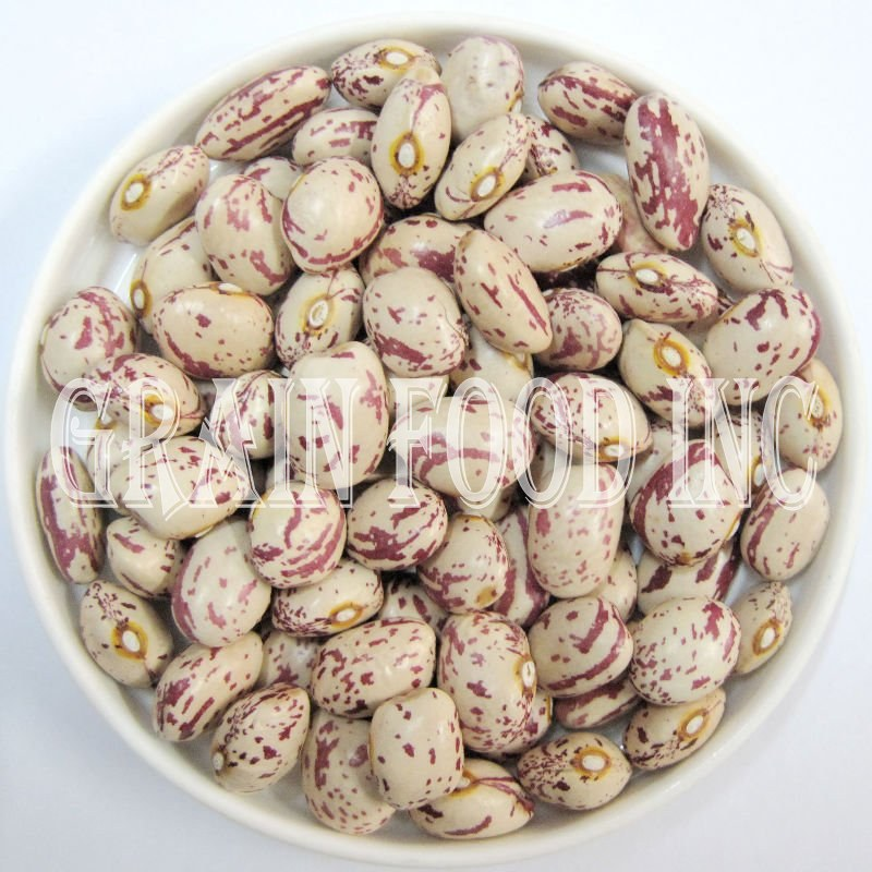 XinJiang Light Red Speckled Kidney Bean - 002