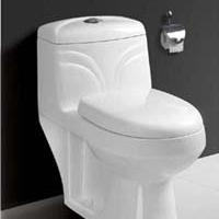 Large picture one piece toilet