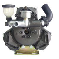 Large picture diaphragm pump