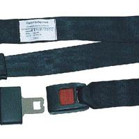 Large picture safety belt