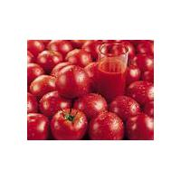 Large picture Tomato Color
