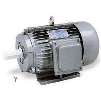 Large picture Y Series Three-Phase motor