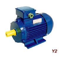 Large picture Y2 Series Three-Phase Asynchronous Induction Motor