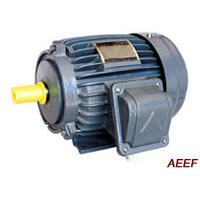 Large picture AEEF IEC Standard Three-Phase Induction Motor