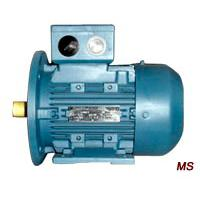 Large picture MS Series Three-Phase ac Motor With Aluminium hous