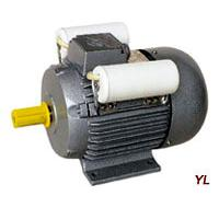 Large picture YL Series Single-Phase Two-Value Capacitor Motor