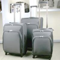 Large picture luggage