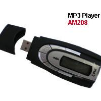 Large picture MP3 Player