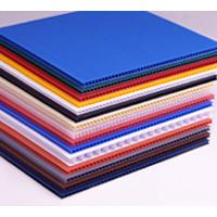Large picture plastic polypropylene