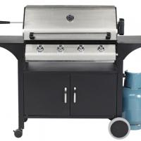 Large picture Outdoor Gas/Carbon Barbecue/BBQ Grill