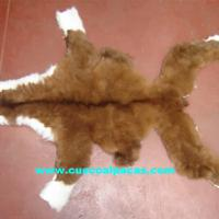 Large picture Alpaca Furs