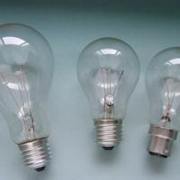 Large picture bulbs