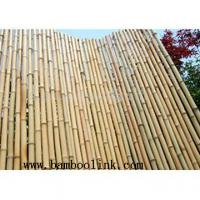 Large picture bamboo fencing, bamboo fence, bamboo edging