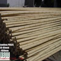 Large picture bamboo pole, bamboo rug, bamboo stick, bamboo cane