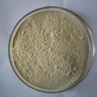 Large picture Garlic Powder Extracts