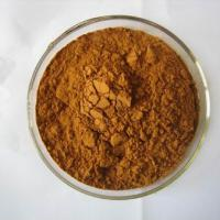 Large picture Ginger Powder Extract