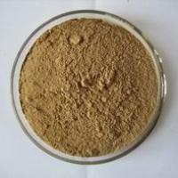Large picture Ginkgo Biloba Powder EXtracts