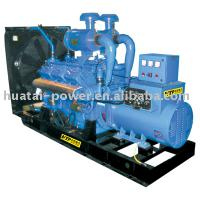 Large picture electric generator