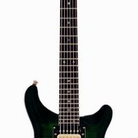 Large picture electric guitar LPR-23 F