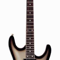 Large picture electric guitar LS-33 ST