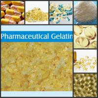 Large picture Pharmaceutical Grade Gelatin