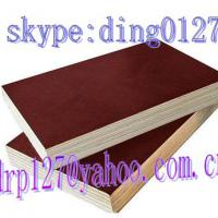 Large picture film face plywood(skype:ding012)china