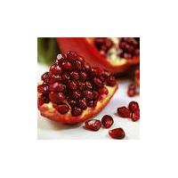 Large picture Pomegranate Juice Concentrate(Reddish Color)