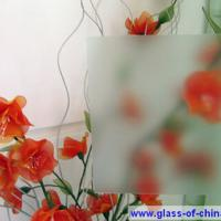 Large picture 2mm Non Glare (Anti-Reflection) Glass