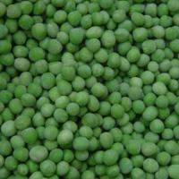 Large picture IQF green peas