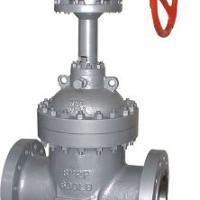 Large picture flat plate gate valve