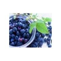Large picture Sweetberry Anthocyanin (sales6 at lgberry)