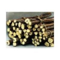 Large picture licorice extract