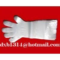 Large picture veterinary long glove