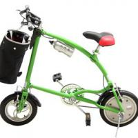 Large picture folding bicycle(ERT-W)