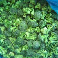 Large picture IQF broccoli florets