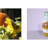 Large picture pumpkin seed oil