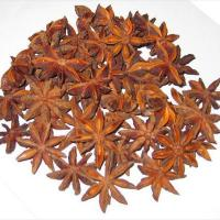 Large picture Star Aniseed