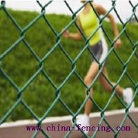 Large picture Chain Link Wire Mesh Fence