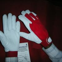 Large picture Working Gloves