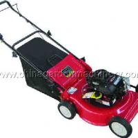Large picture lawn mower