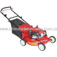 Large picture 22inch lawn mower
