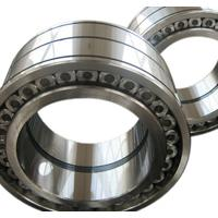 SL(full complement) cylindrical roller bearing