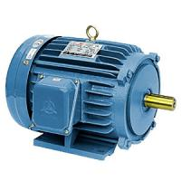 Large picture AC motor