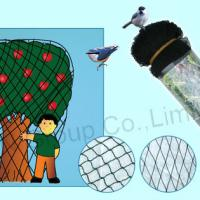 Large picture bird netting