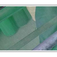 Large picture Plastic Window Screen