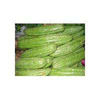 Large picture Balsam Pear Extract